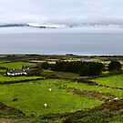Irish Landscape by Béla Török