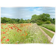 Cotswold Countryside Poster