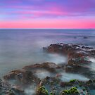 Local Reef by Damon Colbeck