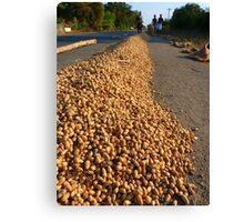 Peanut Peanuts Food Canvas Print