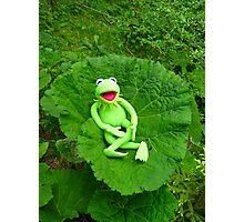 Butterbur Journal Large Nature Frog Kermit Photographic Print