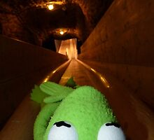Frog Kermit Slip Mine Salt Mine by HQPhotos