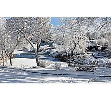 Winter Snow - Fish Bench Photographic Print