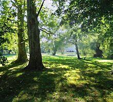 Laxenburger Park by BMV1
