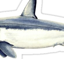 Mako shark Sticker