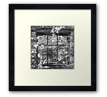 Window in the woods Framed Print