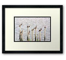 Mobile Bay Framed Print