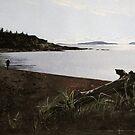 Terrace Bay Beach by Douglas Hunt