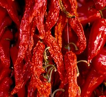 dried chili peppers by Michel Meijer