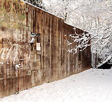 Abandoned Service Station by Leo Hohmann