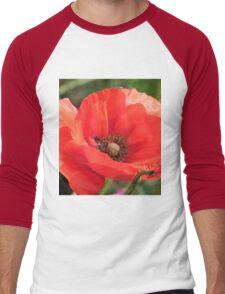Field Poppy Men's Baseball ¾ T-Shirt
