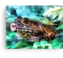 Bullfrog Profile Canvas Print