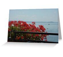 Geraniums Lake View - Trattoria del Moro Greeting Card