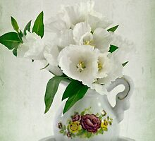 White Godetia Flowers by Sandra Foster