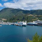 Picton Harbour by Yukondick