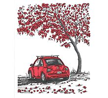 LOVE BUG     red Photographic Print