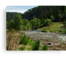 Spearfish Creek Canvas Print
