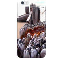 Victor Breaker 1 iPhone Case/Skin