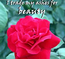 """""""I trade my ashes for beauty"""" by Carter L. Shepard by echoesofheaven"""
