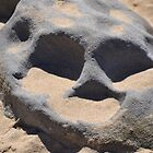Rock Skull by TheaShutterbug