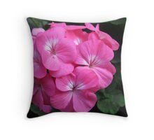 Sunlit Geranium Rose Throw Pillow