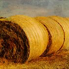 Hay Bales by Angi Allen