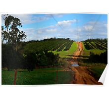 4wd fruit trees  Poster