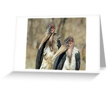 Pretty ugly birds! Greeting Card