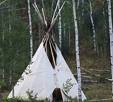Teepee in the wild by B.L. Thorvilson