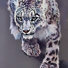 Snow Leopard by Norah Jones
