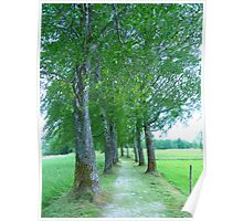 Trees Avenue Away Poster