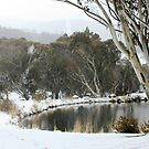 Thredbo Village, NSW by Tim Coleman