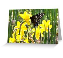 Monarch and Daffodils Greeting Card