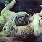 Double the Snuggle by schizomania