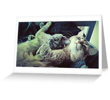 Double the Snuggle Greeting Card