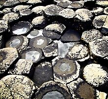 Basalt Formations, Giant's Causeway, Northern Ireland by Lisa Hafey
