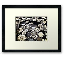 Basalt Formations, Giant's Causeway, Northern Ireland Framed Print