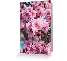 Blossoms 2012 Greeting Card
