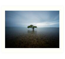 """I Stand Alone"" ∞ King Island, QLD - Australia Art Print"