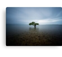 """I Stand Alone"" ∞ King Island, QLD - Australia Canvas Print"