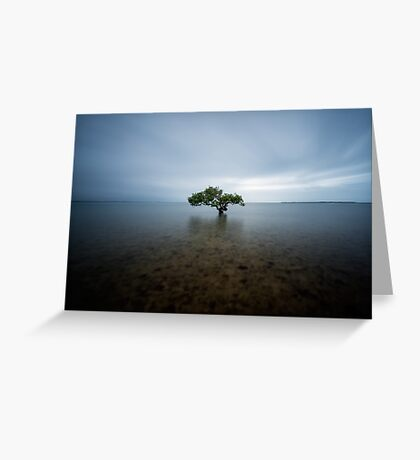 """I Stand Alone"" ∞ King Island, QLD - Australia Greeting Card"