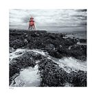 Herd Groyne by Wayman