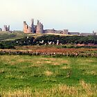 147 - DUNSTANBURGH CASTLE - DAVE EDWARDS - 2012 by BLYTHPHOTO