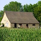 Old Barn - Rural Minnesota by kkmarais