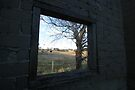 Window by Graham Schofield