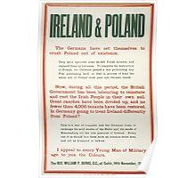 Ireland Poland 194 Poster