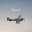 Supermarine Spitfire MkXV1 iPhone Case by Catherine Hamilton-Veal  