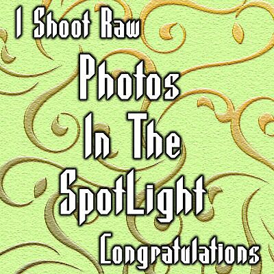 I Shoot Raw .. spotlight photos banner by LoneAngel