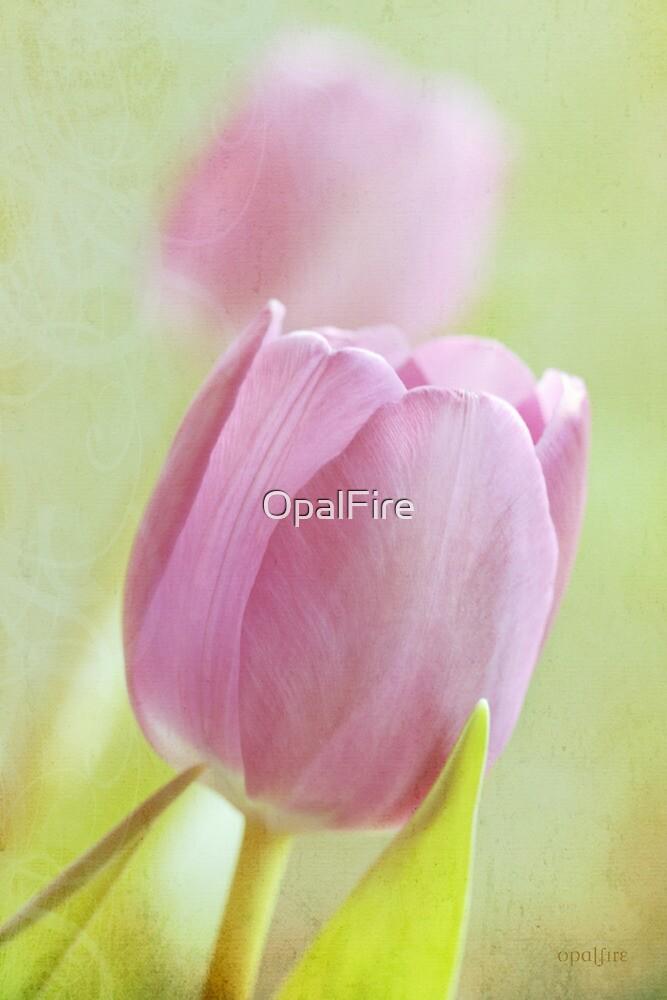 Tulips by OpalFire