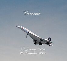 Concorde iPhone Case by Catherine Hamilton-Veal  ©